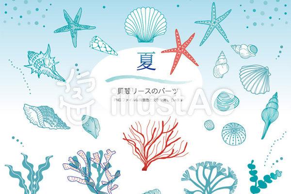 「貝殻リースのパーツ」7月の投稿(2)