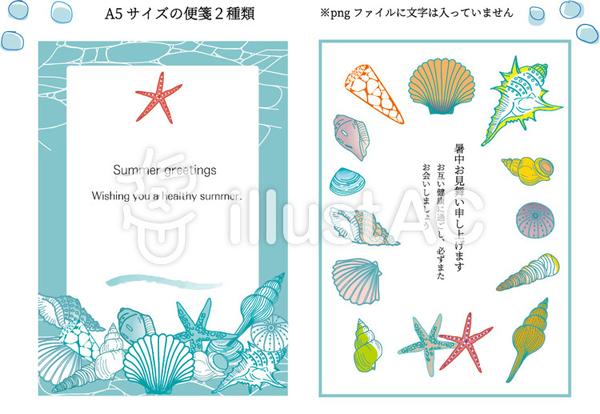 「貝殻のレターペーパー2種類」7月(3)